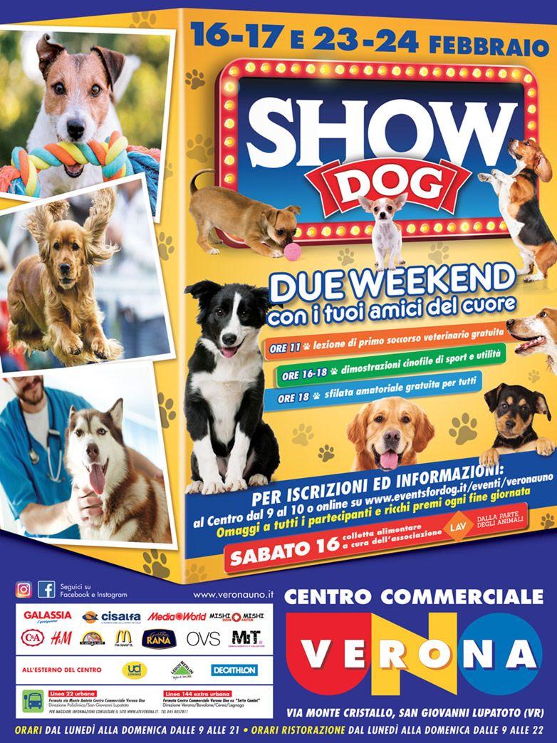 DogShow presso il centro commerciale VeronaUno