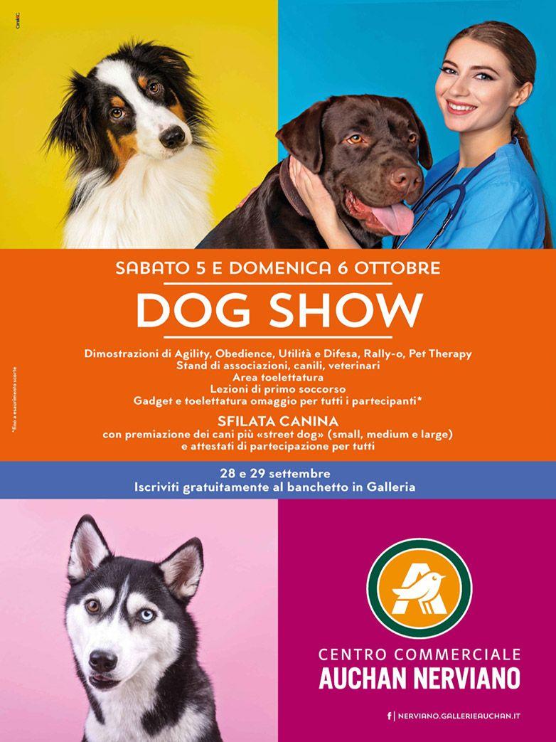 DogShow presso il c.c. Auchan di Nerviano